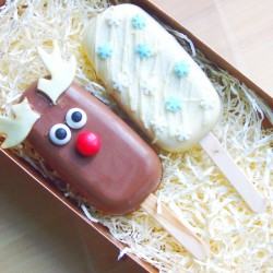 Reindeer Popsicle Gift Box