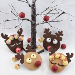 Chocolate Reindeer & Christmas Bonbons