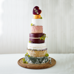 Godminster Wedding & Celebration Cheese Cake