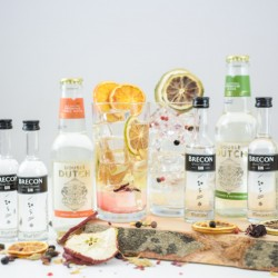 Brecon Gin And Tonic Set