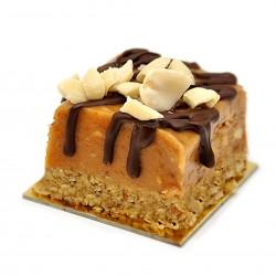 Raw Peanut Butter Fudge Cake Slices