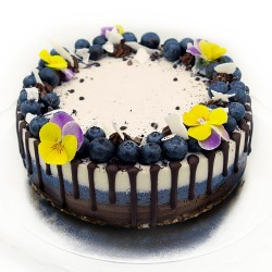 Raw Chocolate, Blueberry & Coconut Triple Layer Cake