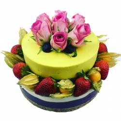 Special Occasion Two-Tier Raw Celebration Cake