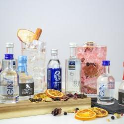 Traditional English Gin Tasting Set