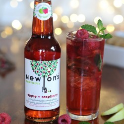 Newton's appl fizzics - apple + raspberry (12 x 330ml)