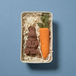 Chocolate Bunny And Large Carrot