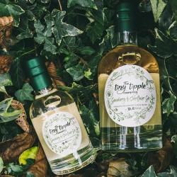 Gooseberry & Elderflower Gin