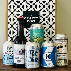 Mixed Style Craft Beer Case