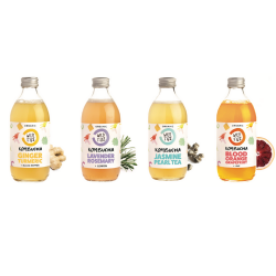 Organic Kombucha Fermented Tea Rainbow Pack (12 Bottles)