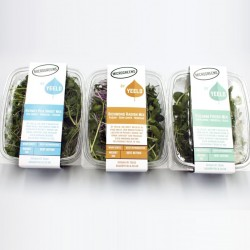 Microgreen Mixes Selection Pack