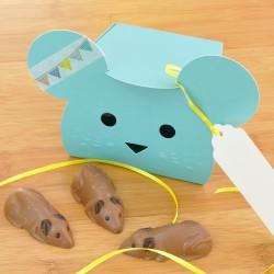 Chocolate Mice Treat Box