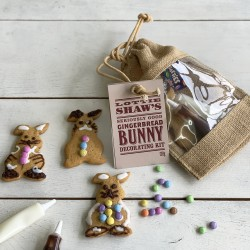 Easter Bunny Decorating Kit