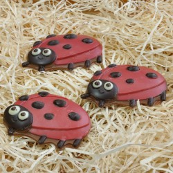 Handmade Ladybird in Belgian Chocolate with Natural Coloring
