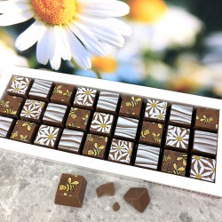 Mosaic Chocolates in Milk Chocolate with Bees and Daisies