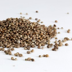 Organic Whole Hemp Seeds - Re-sealable Pouch