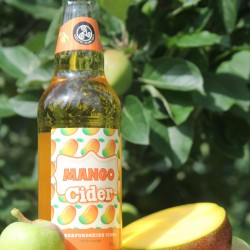 Mango Cider 4% 12 x 500ml bottles