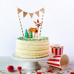 Oh Deer Cake Kit
