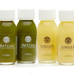 Organic Ginger + Matcha Green Tea Shots | Mixed Case (12x60ml)