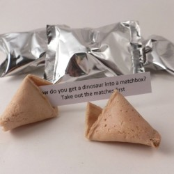 Childrens Fortune Cookies