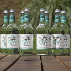 Natural Low Sugar Tonics 500ML - Apple & Garden Mint (Case of 8)