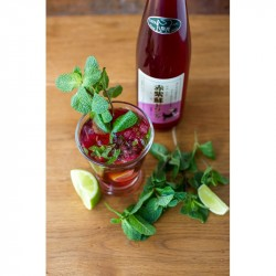 Red Shiso Delight 500ml