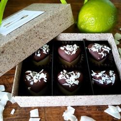 Raw Organic Lime & Coconut Truffles