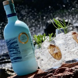 Sea Arch Coastal Juniper | Distilled Non-Alcoholic Spirit (70cl)