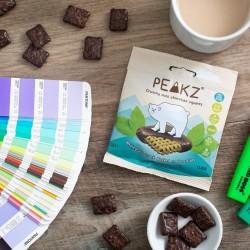 Vegan Mint Chocolate Crunchy Squares (10 Bag Case)