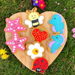 Summer Feels Biscuit Treat Pack (Pack of 8)