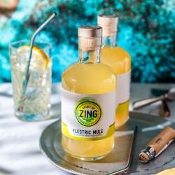 Electric Ginger Vodka Mule