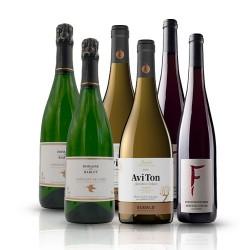 Biodynamic Wine Selection - 6 Bottles