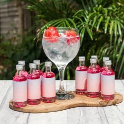 Pink Gin Miniatures - Set of 10