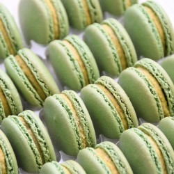 Pistachio Macarons in Bulk (Tray of 24)