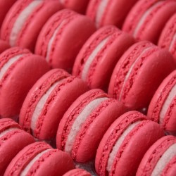 Raspberry Macarons in Bulk (Tray of 24)