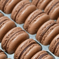 Chocolate Macarons in Bulk (Tray of 24)