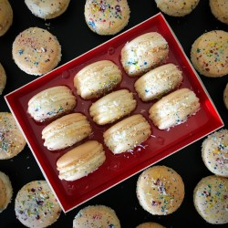 Abstract Coconut Macarons