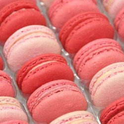 Pink Macaron Selection (Tray of 24)