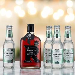 G & T Bundle - Damson Gin and Apple & Elderflower Tonic