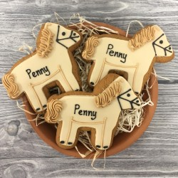 Personalised Pony Biscuits (Pack of 10)