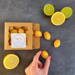 Lemon Lime & Olive Oil Mini Madeleines (Box of 14)