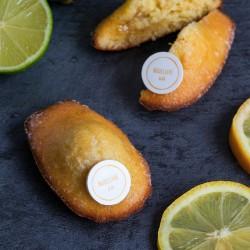 Lemon Lime & Olive Oil Madeleines (Box of 9)