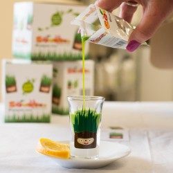 Wheatgrass Shots - Ready to Drink