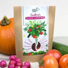 Vegetable Seedbomb - Grow your Own Garden Vegetables Kit