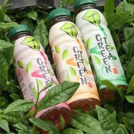 Tg Iced Green Tea Mixed Pack (12 bottles)