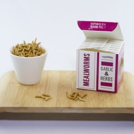 Mealworms Snack Boxes