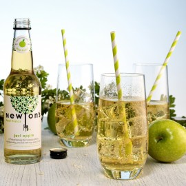 Newton's appl fizzics - just apple (330ml)