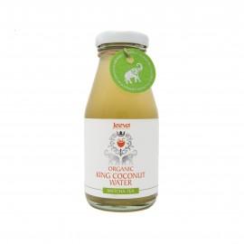 Organic King Coconut Water Matcha Tea
