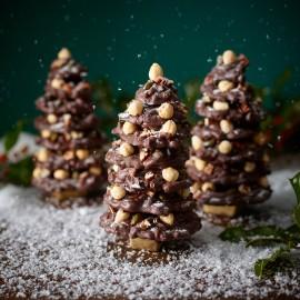 Dark Chocolate Snowy Fruit and Nut Christmas Tree