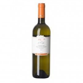 Verdicchio Classico Sup. Organic DOCG 6 Bottles