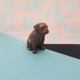 Chocolate Pug